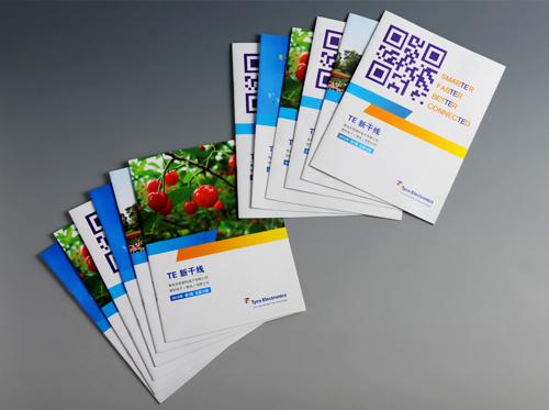 项目背景:青岛安普泰科电子有限公司是泰科集团在青岛投资建设的外商